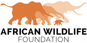 awf_logo_standard_orange_digital_highres_1370